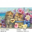 Милые котята Раскраска по номерам на холсте Molly