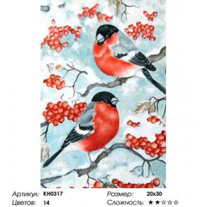 Количество цветов и сложность Снегири Раскраска по номерам на холсте Molly KH0317
