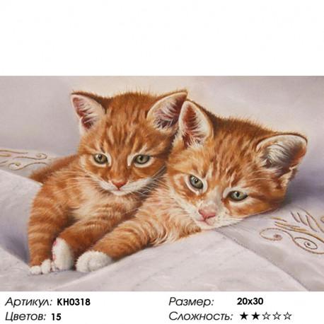 KH0318 Рыжие котята Раскраска по номерам на холсте Molly ...