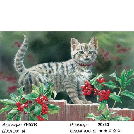 Количество цветов и сложность Прогулка Раскраска по номерам на холсте Molly KH0319
