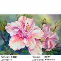 Красивый цветок Раскраска по номерам на холсте Molly