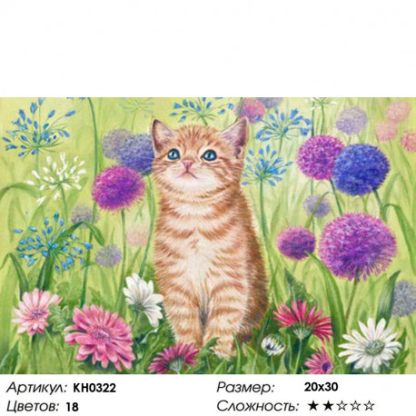 Количество цветов и сложность Летний день Раскраска по номерам на холсте Molly KH0322