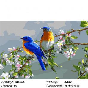 Количество цветов и сложность Весенние цветы Раскраска по номерам на холсте Molly KH0324