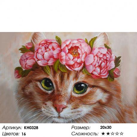 Количество цветов и сложность Красавица Раскраска по номерам на холсте Molly KH0328