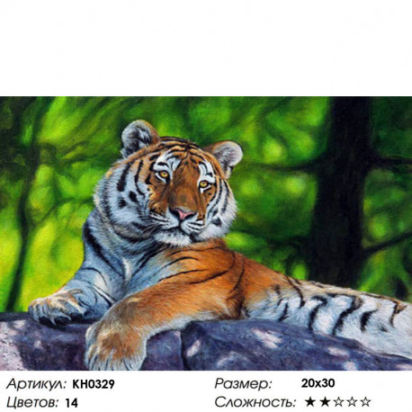 Количество цветов и сложность Амурский тигр Раскраска по номерам на холсте Molly KH0329
