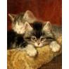Котята Раскраска по номерам на холсте Molly KH0307