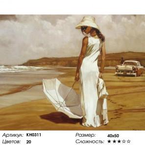 Количество цветов и сложность В стиле ретро Раскраска по номерам на холсте Molly KH0311