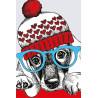 Модный пёс Раскраска картина по номерам MC1079