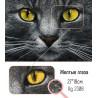 Крупно Жёлтые глаза AG2308