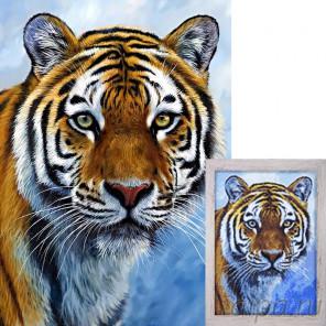 Спокойствие тигра AG2311