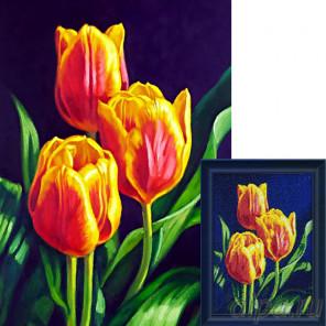 Тюльпанов цвет AG2312
