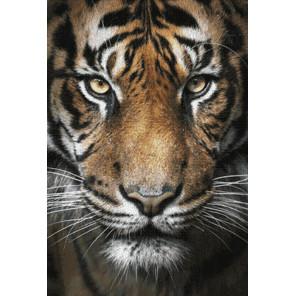 Раскладка Вождь тигров AG2321