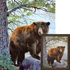 Бурый медведь Ag085