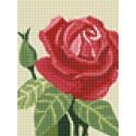 Раскладка Роза AG2271