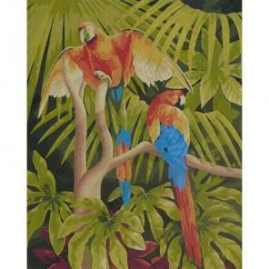 Попугаи Раскраска по номерам акриловыми красками на холсте Worad Art