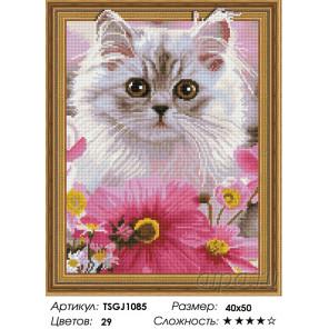 Количество цветов и сложность Белый кот Алмазная вышивка мозаика на подрамнике 3D TSGJ1085