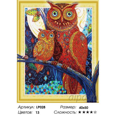 Количество цветов и сложность Совушки Алмазная вышивка мозаика на подрамнике 5D LP028