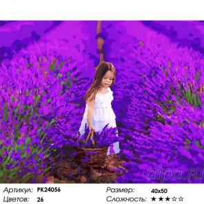 Сложность и количество цветов В лавандовом поле Раскраска картина по номерам на холсте PK24056