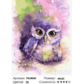 Сложность и количество цветов Мудрая совушка Раскраска картина по номерам на холсте PK24043