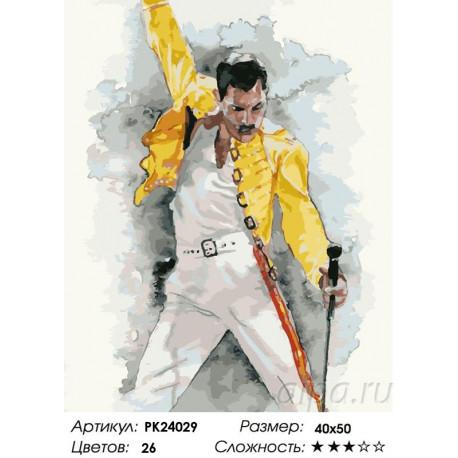 Сложность и количество цветов Фредди Меркьюри Раскраска картина по номерам на холсте PK24029