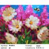 Сложность и количество цветов Летний полёт Раскраска картина по номерам на холсте PK24018