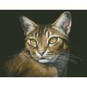 Абиссинская кошка Алмазная мозаика вышивка Паутинка М-354