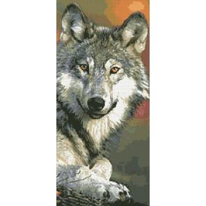 Волк Алмазная мозаика вышивка Паутинка М-357