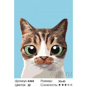 Борис Раскраска по номерам на холсте Живопись по номерам A565