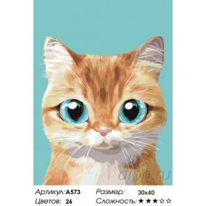 Абрикосик Раскраска по номерам на холсте Живопись по номерам A573