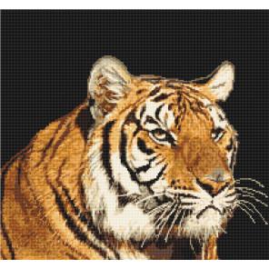 Тигр Набор для вышивания Luca-S B334