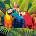 Раскладка Семейка попугаев Раскраска картина по номерам на холсте A93