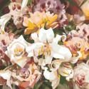 Раскладка Розы и лилии Раскраска картина по номерам на холсте F14