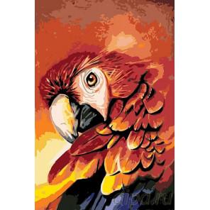 Огненный попугай Раскраска картина по номерам на холсте A358