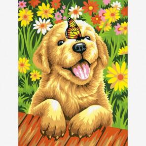 Щенок-садовник Раскраска (картина) по номерам акриловыми красками Dimensions