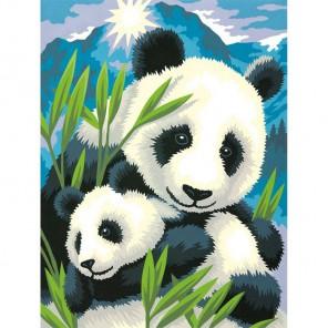 Панда и детеныш Раскраска (картина) по номерам акриловыми красками Dimensions