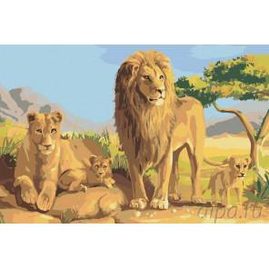 Раскладка Семейство львов Раскраска картина по номерам на холсте RA030