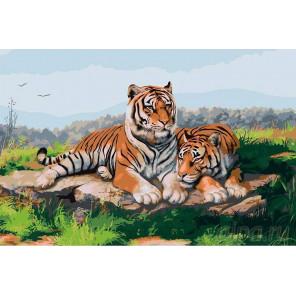 Пара тигров Раскраска картина по номерам на холсте KRYM-Z004