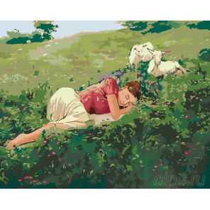 Сон на лугу Раскраска картина по номерам на холсте RA003