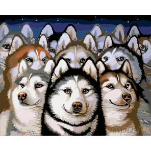 Раскладка Хаски Раскраска картина по номерам на холсте A306