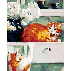 Два рыжих кота Раскраска картина по номерам на холсте A82