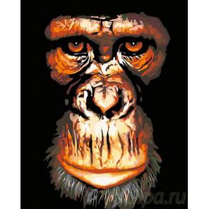 Портрет обезьяны Раскраска картина по номерам на холсте A179