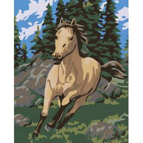Раскладка Бегущий конь Раскраска картина по номерам на холсте KRYM-AN01