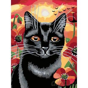 Котейка в маках Раскраска картина по номерам на холсте A134