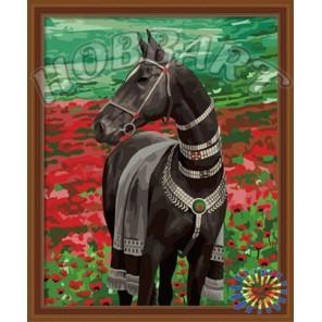 Ахалтекинской породы Раскраска по номерам акриловыми красками на холсте Hobbart