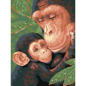Семейство обезьян Раскраска картина по номерам на холсте A58