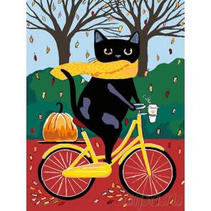 Раскладка На велосипеде. Осень Раскраска картина по номерам на холсте A318