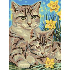 Кошка с котенком Раскраска картина по номерам на холсте A05
