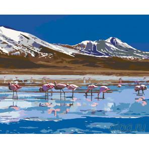 Раскладка Фламинго на озере Раскраска по номерам на холсте Живопись по номерам Z3135