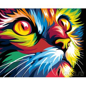 Радужная мордочка кота Раскраска по номерам на холсте Живопись по номерам PA02