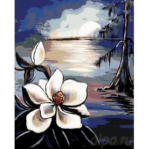 Лунный цветок Раскраска по номерам на холсте Живопись по номерам RA135
